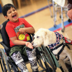 Updated evidence on the efficacy of AFOs in children with cerebral palsy