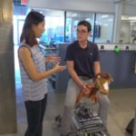 Simulated horseback riding helpful in treating children with cerebral palsy